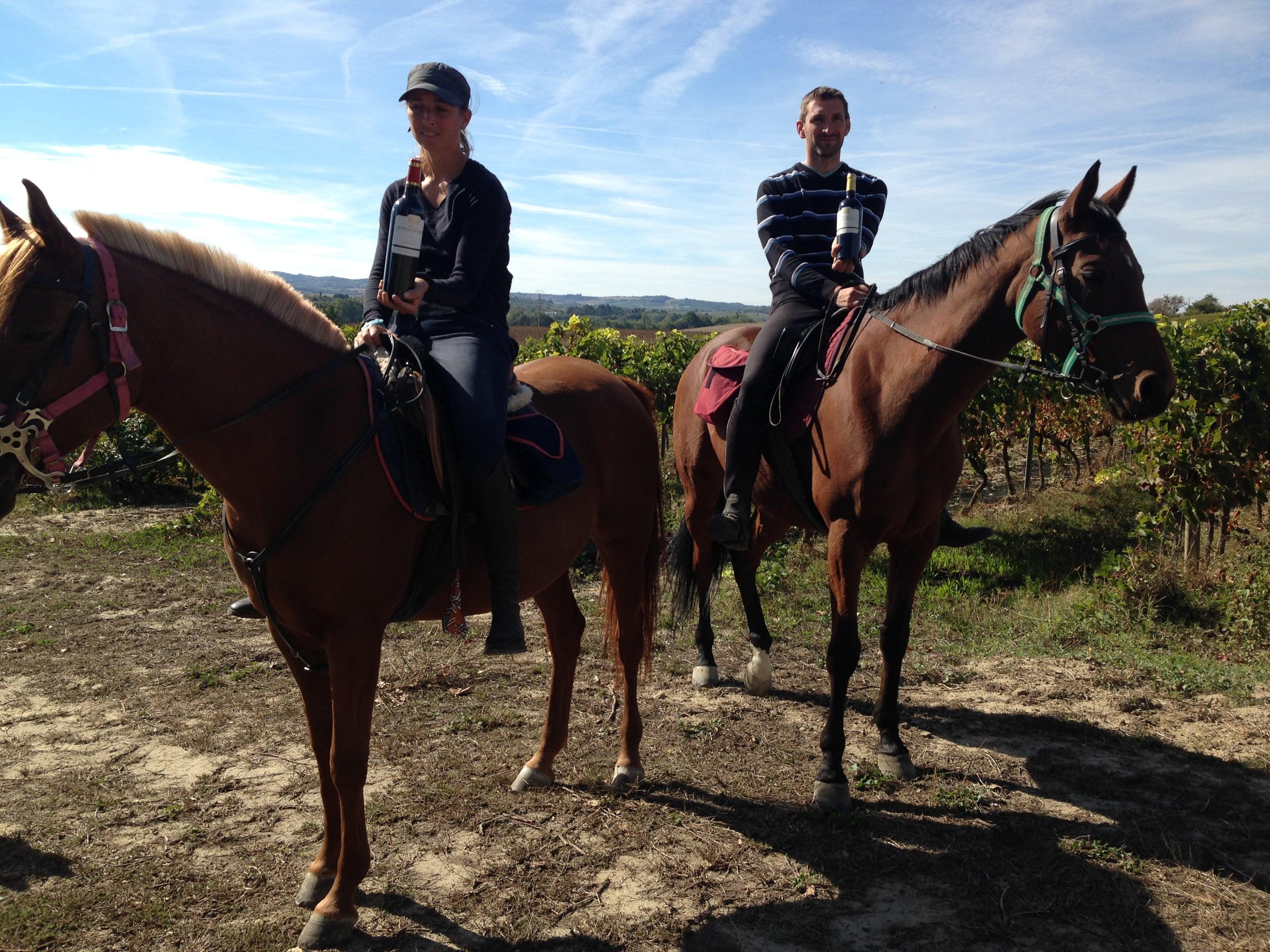 chevaux vin