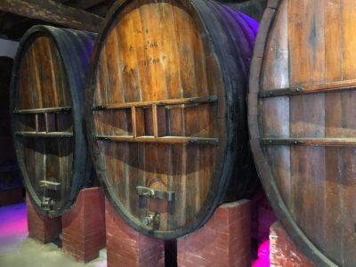 Terroirs Vignes caves Aude