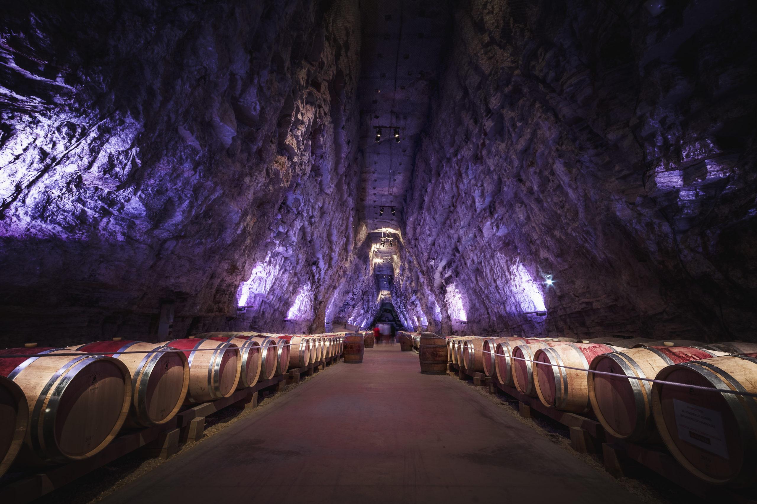 sons et lumières vin terra vinea